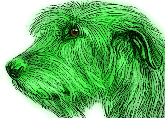 Finlay BioSketch_green filter